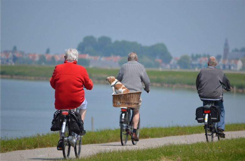 orta yaş-erkeklerde 50 yaş sendromu belirtileri-genç yaş aralığı nedir-saçlar kaç yaşında beyazlamaya başlar-orta yaş aralığı-orta yaş aralığı kaçtır-yaşlılık yaşı kaçtır-erkeklerde 40 yaş sendromu nasıl atlatılır nedir-kadınlarda orta yaş bunalımı-orta yaş hangi yaşlardır-orta yaş bunalımı nedir-genç yaş grubu kaçtır-orta yaş bunalımında yapılması gerekenler-orta yaş kaç yaştır-orta yaş bunalımı cinsel hayatı-orta yaş sendromu nasıl atlatılır-orta yaş kaçtır-yolun yarısı